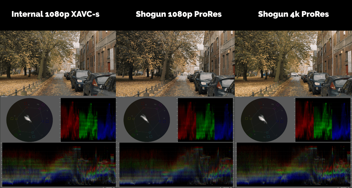 Codec Comparison (LUT Applied)